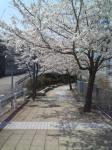 堺市中区学園町の家庭教師  KEI先生