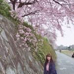 京都市下京区の家庭教師  しほ先生