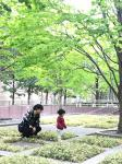 名古屋市昭和区の家庭教師  たかや先生