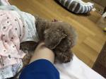 堺市北区の家庭教師  あぽ先生